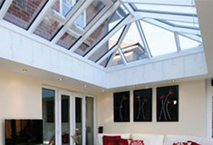 atlas traditional elongated skylight